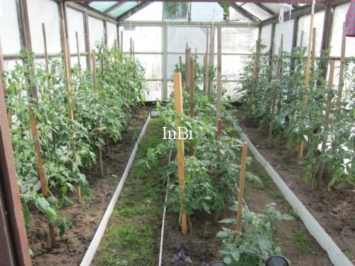 подготовкa почвы в теплице под