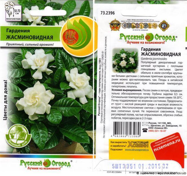 Гардения выращивание в домашних условиях 148