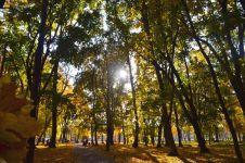 Городские пейзажи и достопримечательности