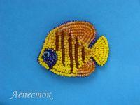 Украшения из бисера: Экзотическая рыбка брошь