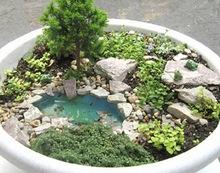 Работа Жанит Кальво - миниатюрный сад и миниатюрный водоем в цветочном горшке