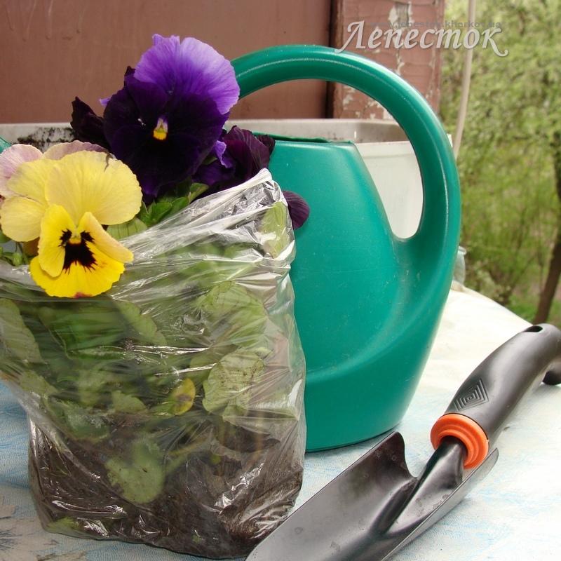 Как сделать цветы своими руками. Из:бумаги, лент 20